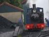 5 Train (09)
